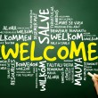 Word cloud of WELCOME in different languages, business concept — Stock Photo #65998647