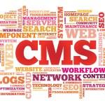 CMS Content Management System word cloud — Stockvektor  #66594957
