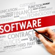 Software Word cloud — Stock Photo #67351203