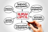 Human capital — Stock Photo