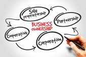 Business ownership — Stock Photo