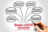 Human capital strategy — Stock Photo