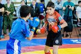 Arts martiaux mixtes deux combats — Photo