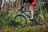 Mountainbiker in the mountains by downhill — Photo