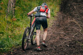 Mountainbiker in a uphill race — Fotografia Stock