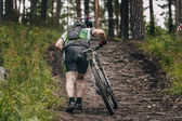 Mountainbiker rides in forest — Stock Photo