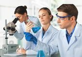 Laboratory, Chemistry, Chemist. — Stock Photo
