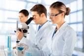 Laboratory, Scientist, Research. — Stock Photo