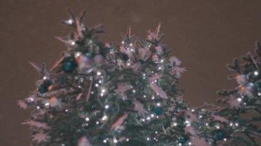Christmas tree and snow — Stock Video