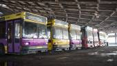 Abandoned bus fleet — Stock Photo