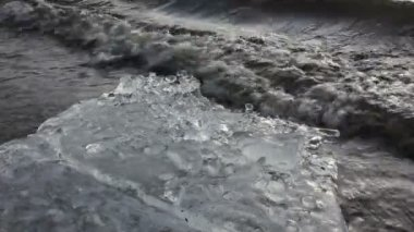 Ice, Ocean and Beach — Stock Video