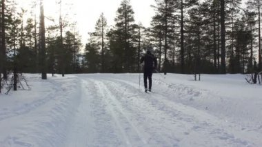 Cross Country Skiing — Stock Video