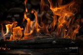 Burning wood in fire — Stock Photo