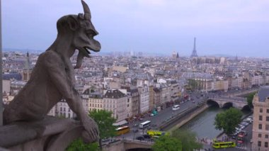 Gargoyle watch over Paris — Stock Video