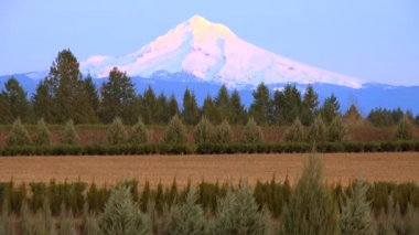 Sunset light illuminates Mt. Hood, — Stockvideo