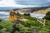 Pacific Coast of Northern California — Stock Photo