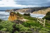 Pacific Coast of Northern California — Stock Photo