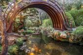 Japon çay bahçesi kemerli davul Bridge'de — Stok fotoğraf