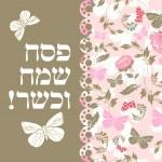 Jewish passover greeting card — Stock Vector #67247331