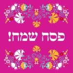 Jewish passover greeting card — Stock Vector #67247443