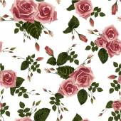 Floral pattern with pink roses — Stock Vector