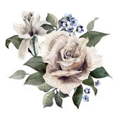 Watercolor roses and delphinium flowers — Stock Photo