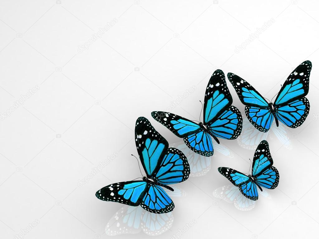 Grupo De Hermosas Mariposas 3d