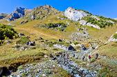 Trekking in montagna — Foto Stock
