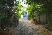 Starożytnej ulicy z kwiatami — Zdjęcie stockowe
