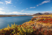 Colorful autumn tundra and river Amguema Arctic Circle, Russia — Stock Photo