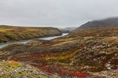 Autumn tundra in fog and river Amguema Arctic Circle, Russia — Stock Photo
