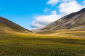 Colorful autumn Chukotka tundra, Arctic Circle Russia — Stock Photo