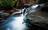 Petite chute d'eau dans la forêt — Photo