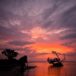 Sunset over the seashore in Florida — Stock Photo #69992929