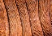 Profondo interno foderato sfondo Texture legno rosso intagliato — Foto Stock