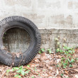 Old Tire Laying on a Wall in the Abandoned Garden — Stock Photo #72516283