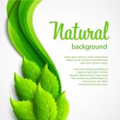 Natural vector background with green spring leaves — Stock Vector