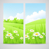 Clean spring amazing scenery. Vector illustration — Stock Vector