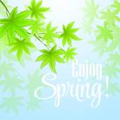 Spring fresh green leaves. Vector illustration — Stock Vector