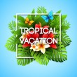 Exotic vacation. Vector illustration with tropical plants and flowers — Stock Vector #70672963