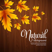Automne background texture feuille et bois. Illustration vectorielle — Vecteur