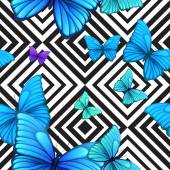 Vector seamless pattern with blue butterfly, black and white geometric background — Stock Vector