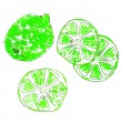 Watercolor set of isolated limes on white background.  Lime segments, juicy lime. Sketch style. Vector illustration. — Stock Vector #77556964