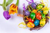 Easter eggs nest — Stock Photo