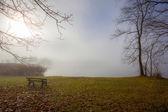 Fog lake — Stock Photo
