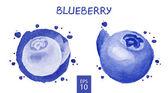 Fruits set - Blueberry — Stock Vector