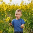 Little boy with a bouquet of flowers is in the yellow flowering — Stock Photo #72362109
