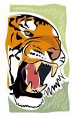 Sketchy tiger — Stock Vector