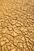 Texture of dried mud and cracked vertical format — Stock Photo
