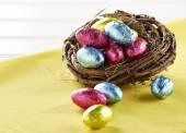 Çikolata yumurta yuvada — Stok fotoğraf